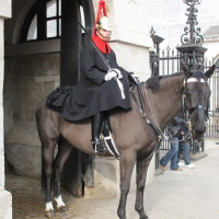 London-2012-Soldier-on-horse