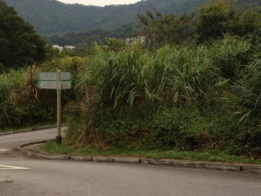 Near to Yuen Tun Ha