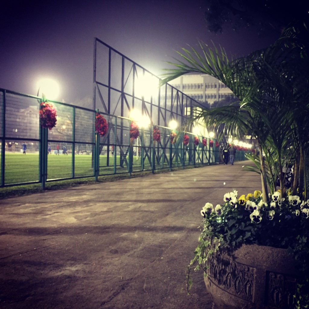 Sports Ground with Flowers Everywhere